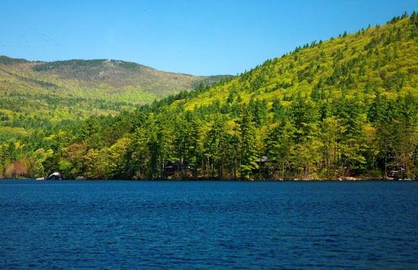 squam lakes natural science center