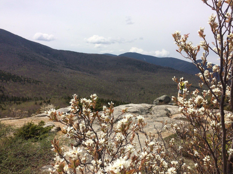 hiking sugarloaf
